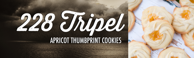 An image listing 228 Tripel from Stormcloud Brewing Co. as a good beer pairing for Apricot Thumbprint Cookies.