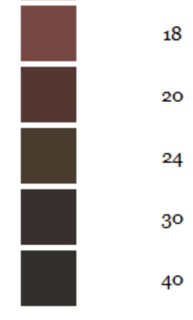 An image of the second half of the SRM (Standard Reference Method) scale, which is how beer color is measured. This half of the scale ranges from light brown too black.